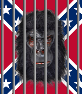 racist gorilla mask in front of confederate flag behind jail bars