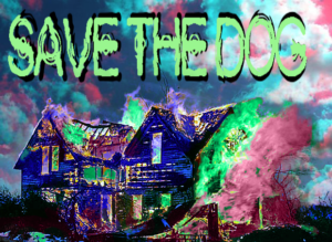 "a burning house under the words ""SAVE THE DOG"" with psychedelic effects over everything"